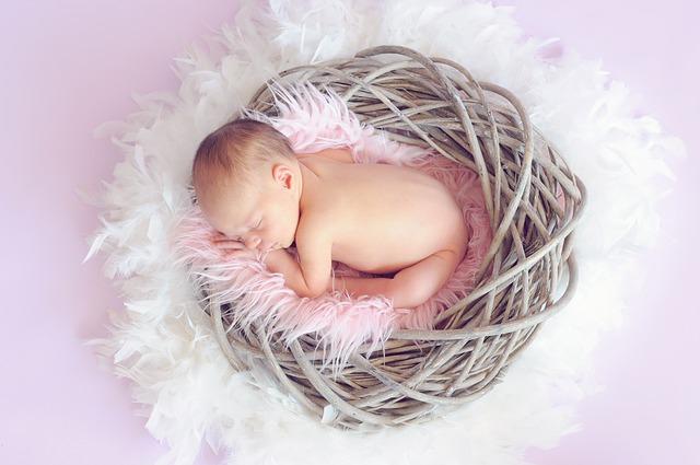 miminko v hnízdečku
